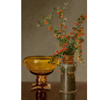 Pyracantha with Art Glass Bowl